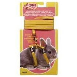Arnes + correa mostaza p/conejo enano