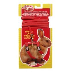 Arnes + correa roja p/conejo enano